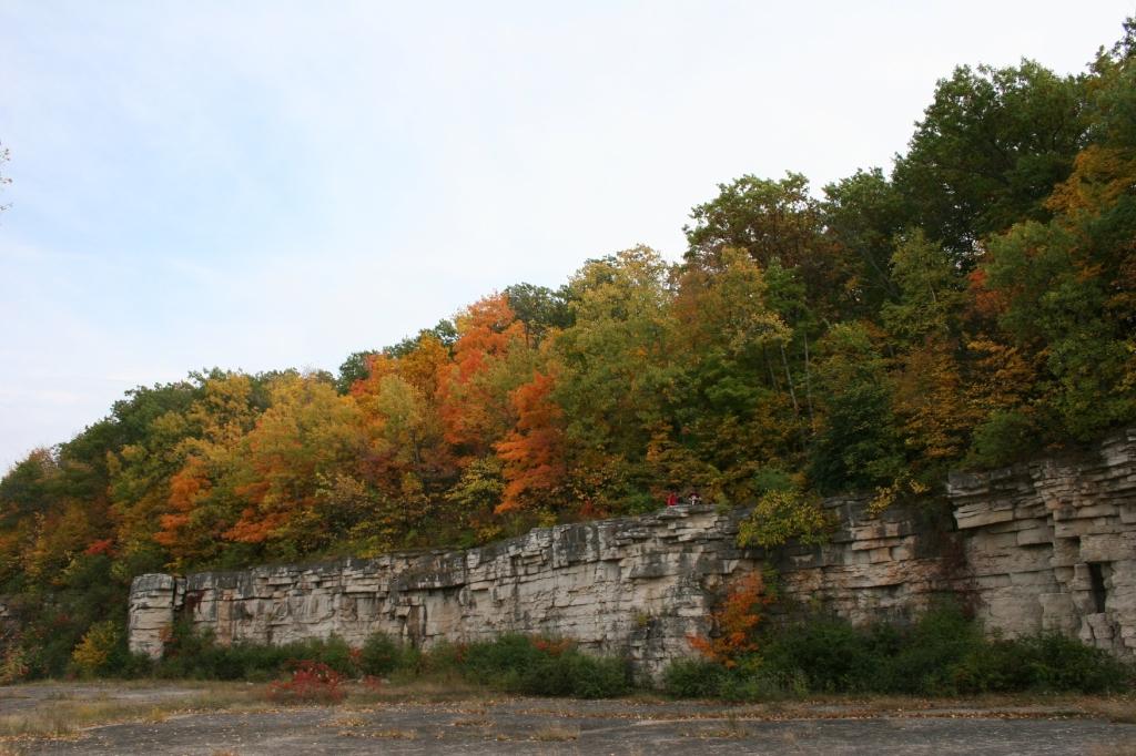 Old limestone quarry walls below a hillside of trees.