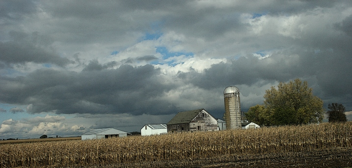 Noticing the geometry in these buildings clustered on a farm site.