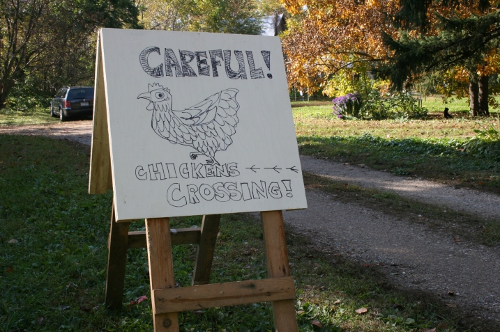 A sign advises visitors of chickens on the farm.