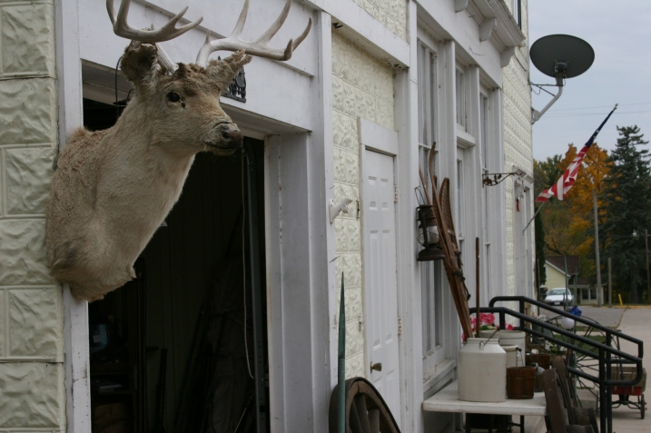 I was a bit creeped out when I spotted this deer head on the garage next to Don't main shop last fall. Minnesota Prairie Roots file photo.