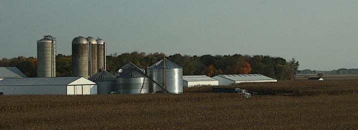 Harvest in progress near U.S. Highway 10 east of Appleton, Wisconsin.