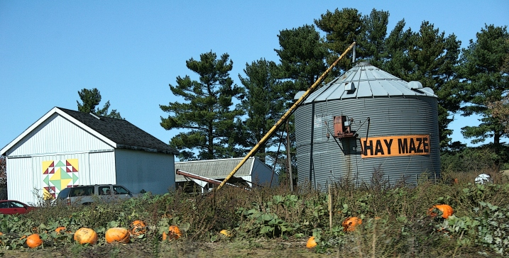Lots of pumpkins harvested also and for sale, these along Wisconsin State Highway 21.