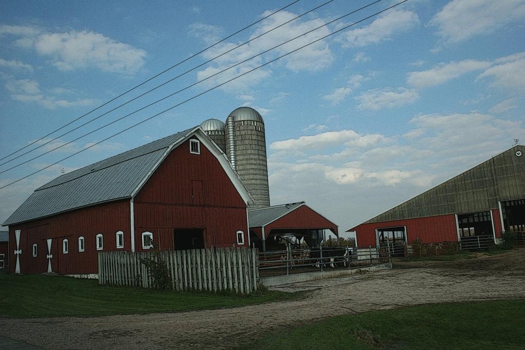 an essay of barn photos  u0026 memories