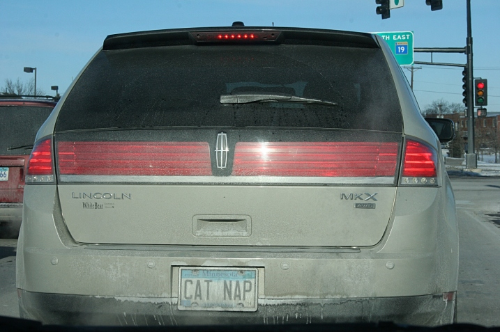 Cat nap license plate