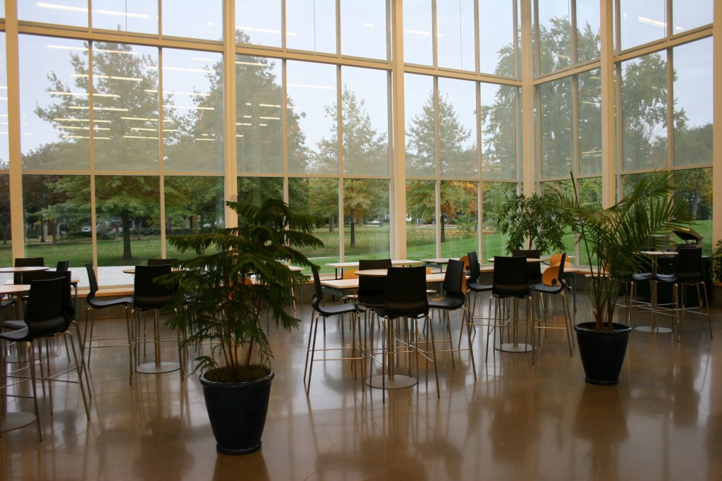 Connecting indoors and out in a section of the Commons.