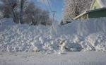 Blizzard, plowed insidewalk
