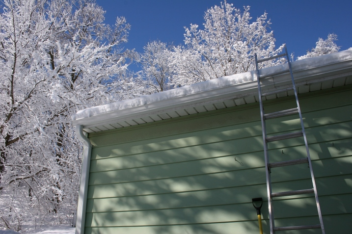 Preparing to shovel snow from the garage roof. Trees in my neighborhood are still laden with ice and snow.