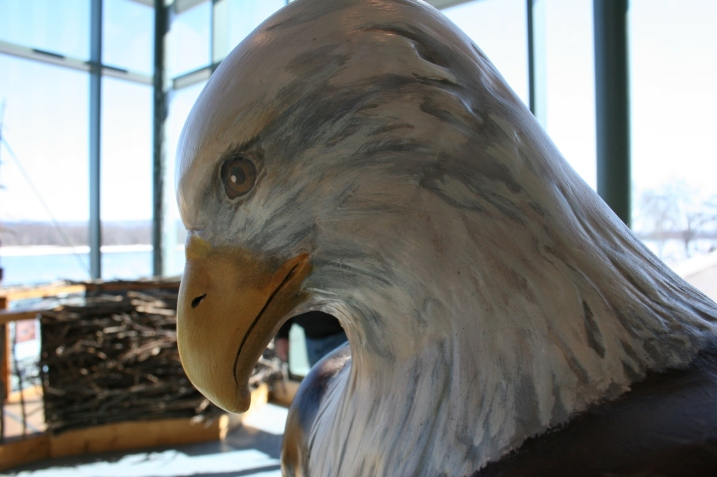Art, eagle head 2