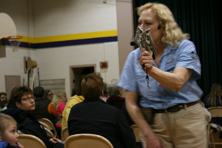 Dale wandered through the audience with the birds, like this owl.
