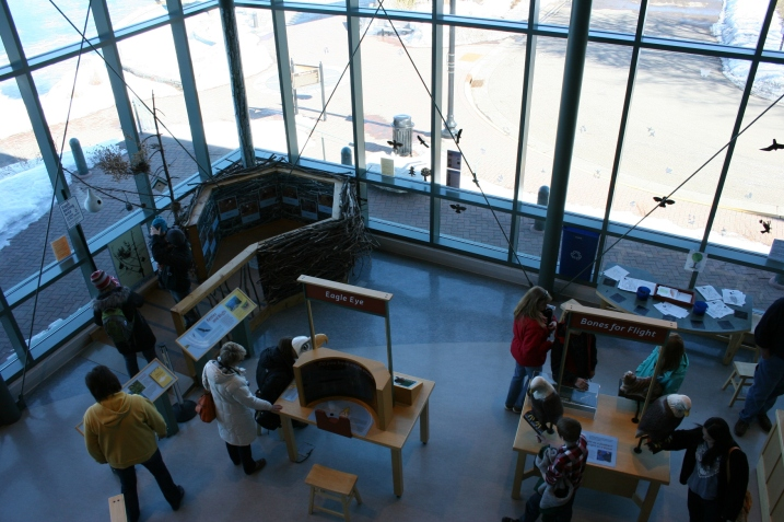 The activity area includes a replica eagle's nest, upper left.