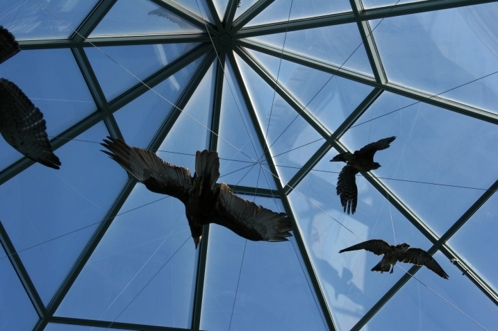 ...birds suspended from the glass ceiling.