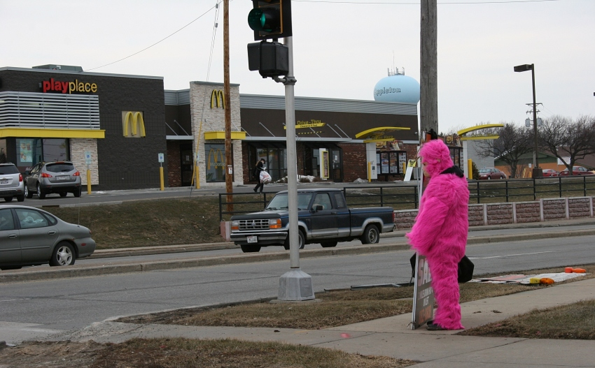 Pink gorilla in Appleton, side view