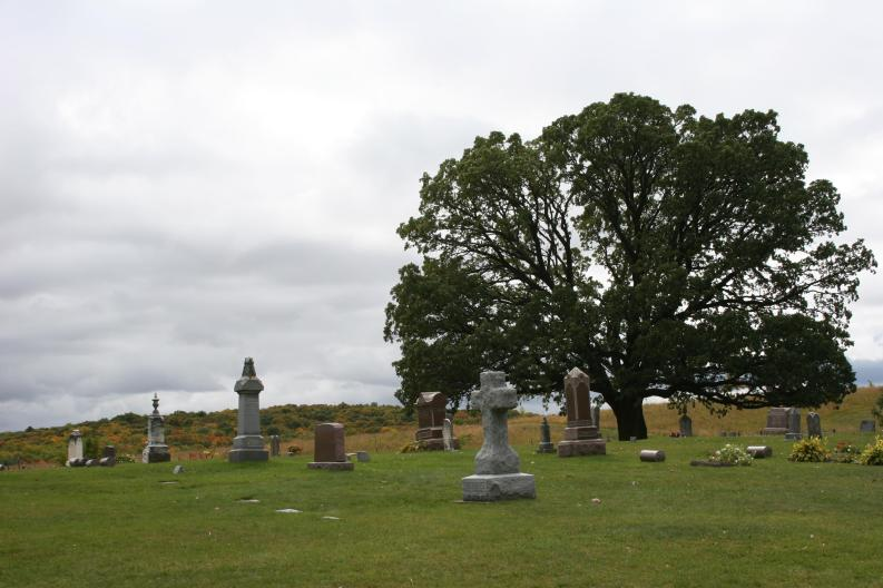 The particularly picturesque Valley Grove Church Cemetery near Nerstrand Big Woods State Park.