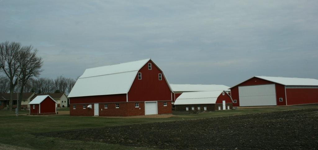 Along Brown County Road 29 between New Ulm and Morgan, Minnesota.