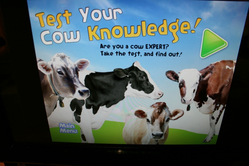 "Test your cow knowledge on this interactive computer screen. Wisconsin is, after all, termed ""The Dairyland State."""