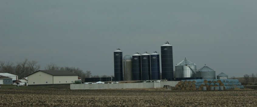 A cluster of Harvestore silos define a farm northeast of Vesta along Minnesota State Highway 19.
