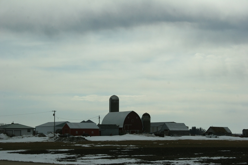 Rural Minnesota, red barn and red building