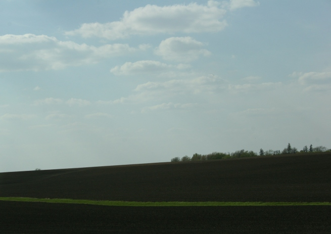 A field along Interstate 90 in southeastern Minnesota.