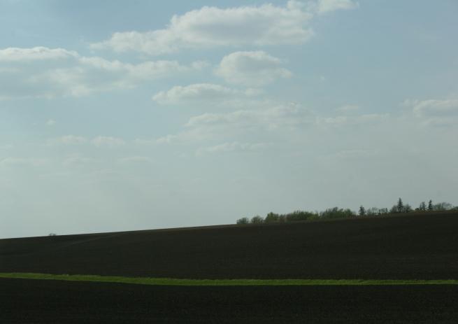 A field along Interstate 90 in southeastern Minnesota.