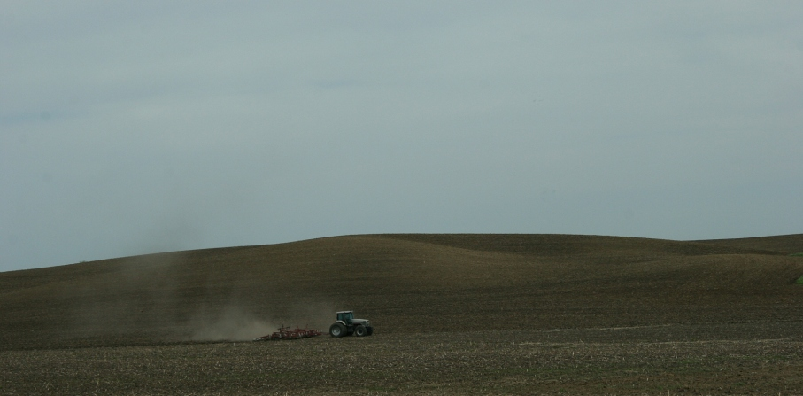 Field work, tractor hill, near Courtland