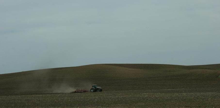 Field work, tractor hill, near Courtland