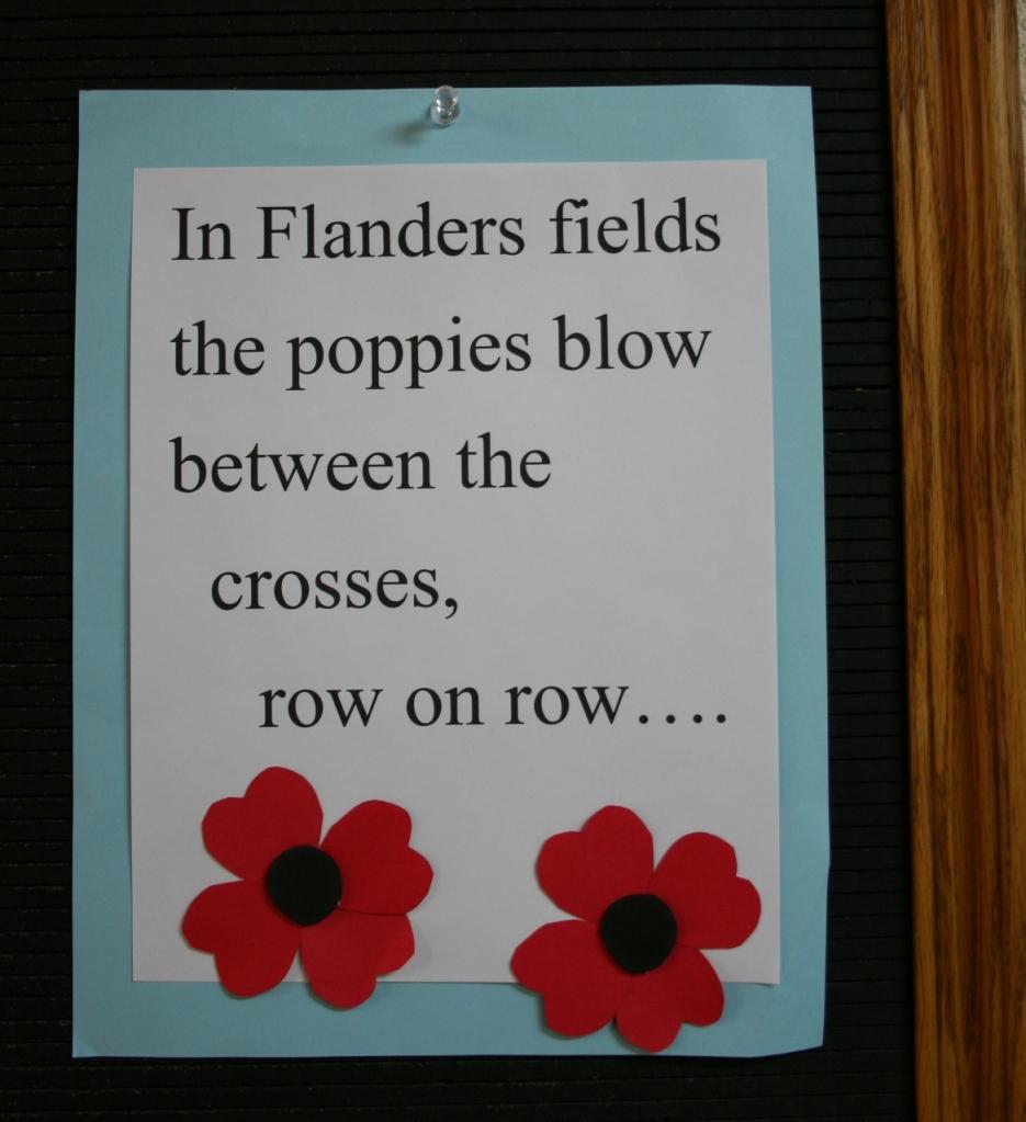 Poppies on bulletin board