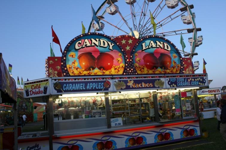 The Rice County Fair, Faribault, Minnesota. Minnesota Prairie Roots file photo 2009.