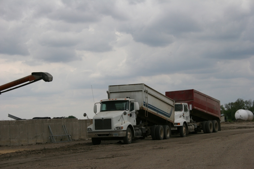 Grain trucks parked near the grain bins.