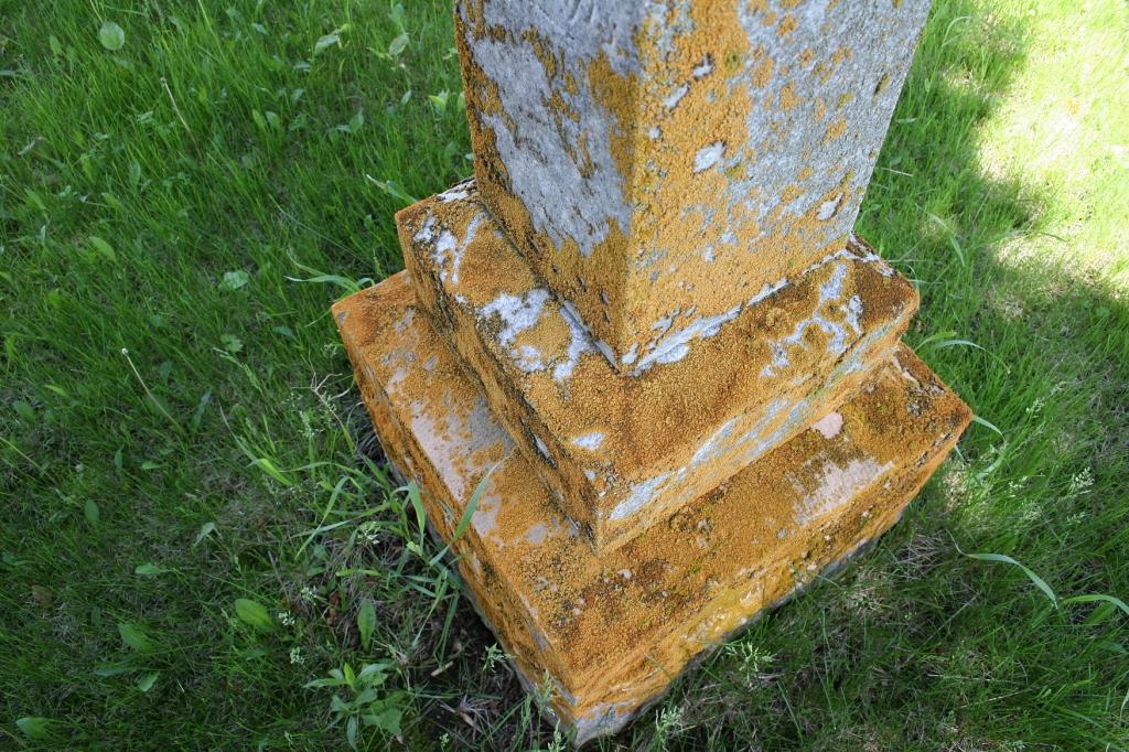 Weeds flourish among the weathered tombstones.