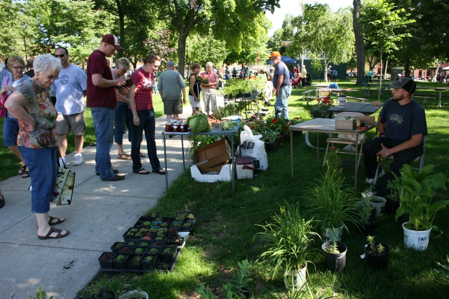 A snapshot scene from the Owatonna Farmer's Market, which covers one-block square Central Park.