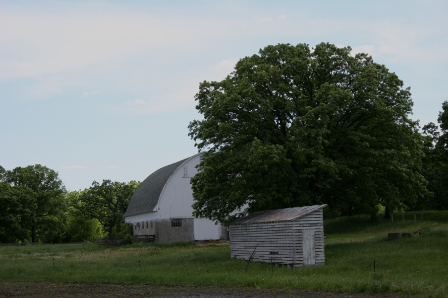 So many old barns and the sweet surprise of this old corn crib.