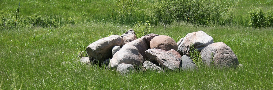 We even notice the rock piles and recall our days of picking rock.