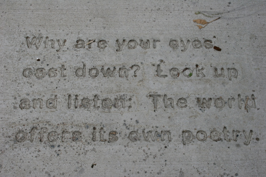 Don't miss the poetry imprinted upon sidewalks on Northfield's downtown. Word art.