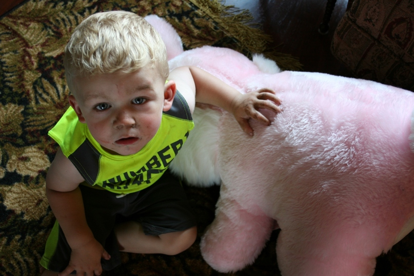 Boy and his bunny