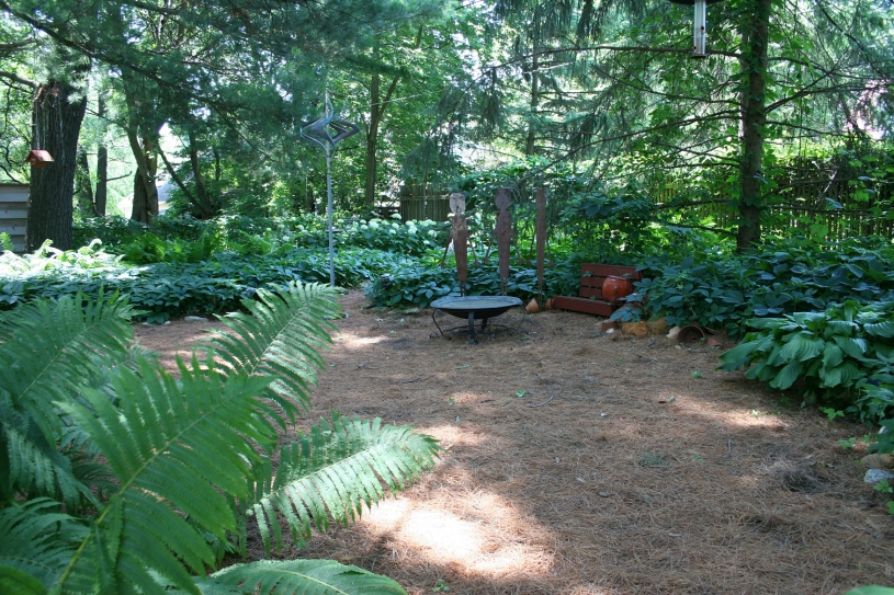 A portion of the shady back yard.
