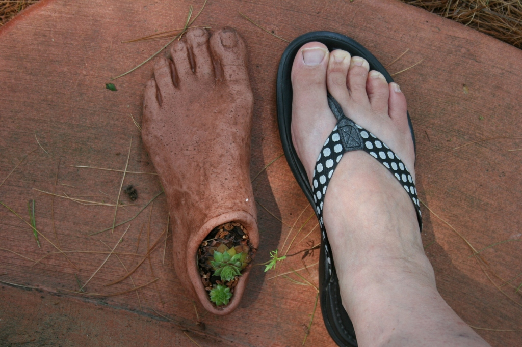I had a little fun pairing my foot with garden art on the back steps.