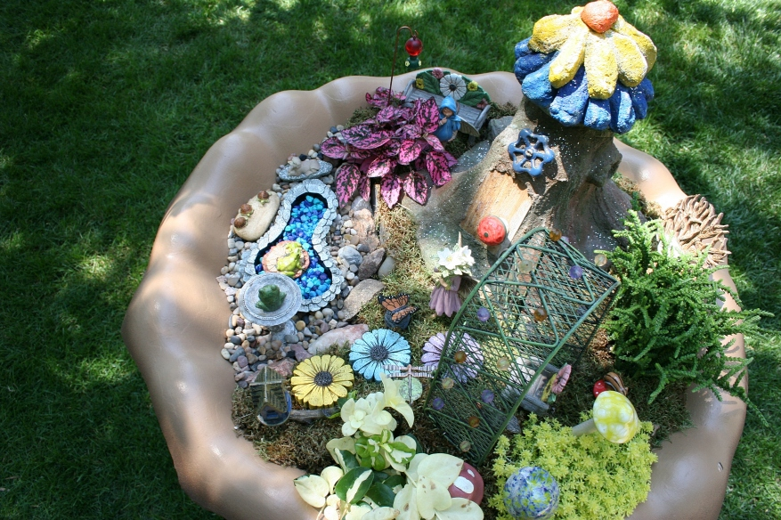 Looking down into a fairy garden.