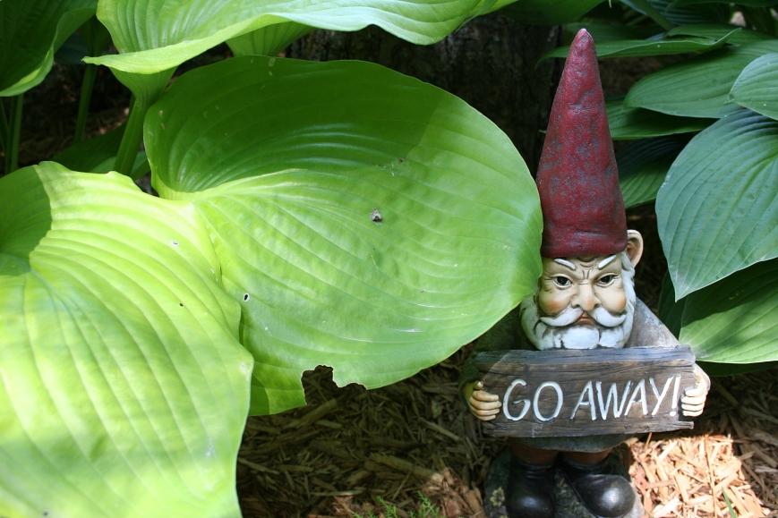 Garden gnome humor.