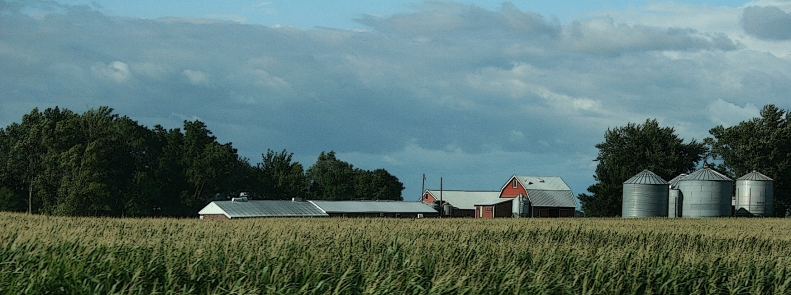 A farm site between Morgan and New Ulm.