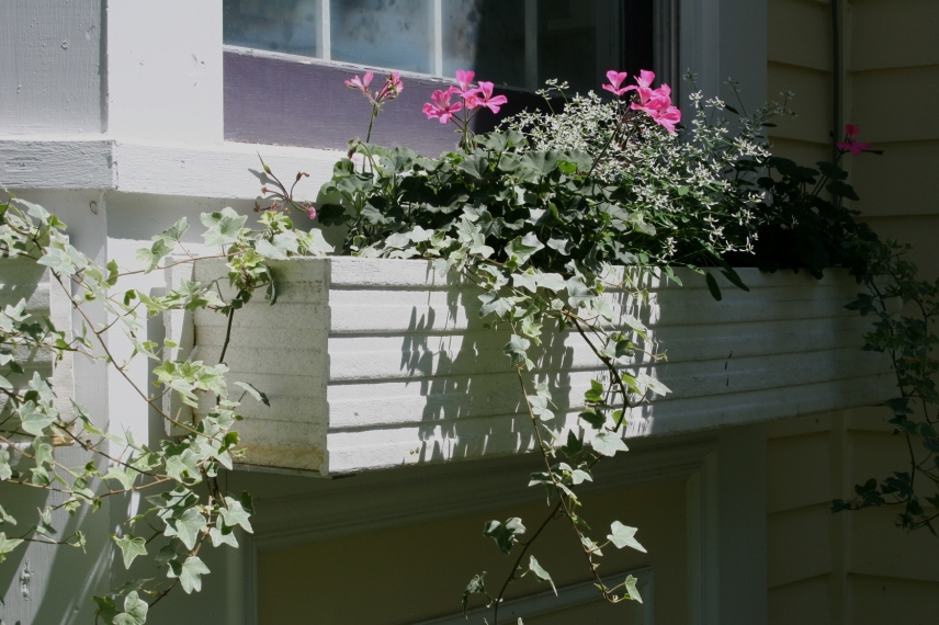 Windowbox charm complements the historic home.