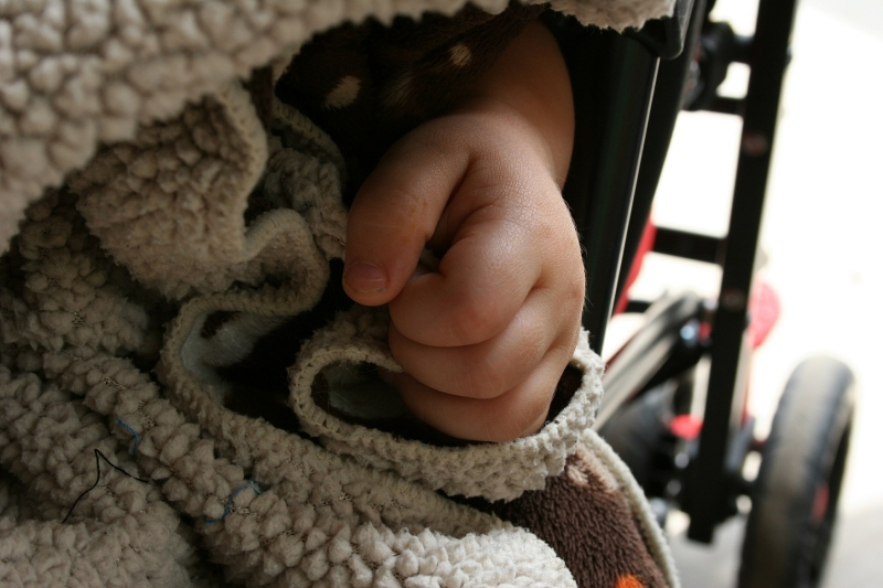 The sweet hand of my 18-month-old great nephew, Aston, as he naps in his stroller.