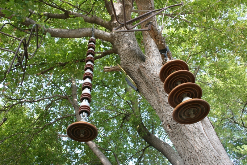 More stuff suspended from trees.