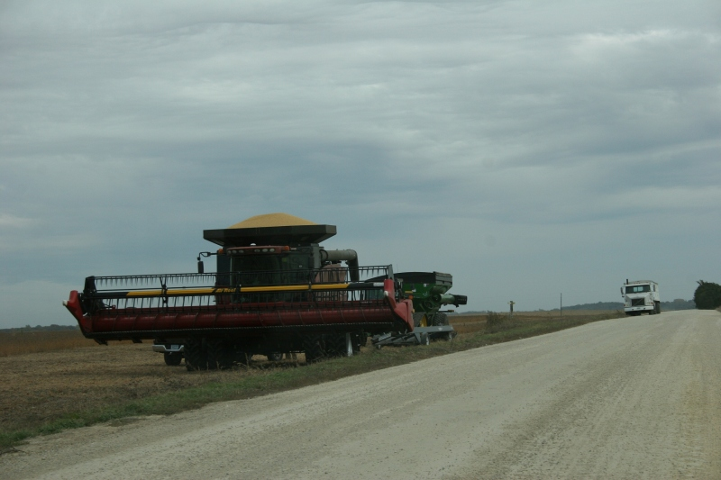 Harvesting just south of Faribault off Rice County Road 45.