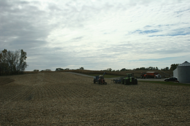 East of Morristown, Minnesota, along Rice County Road 15.