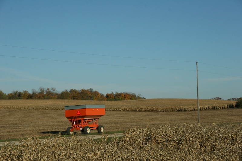 In rural Rice County, a wagon at the harvest ready.