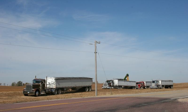 Semis await the harvest in southeastern LeSueur County.