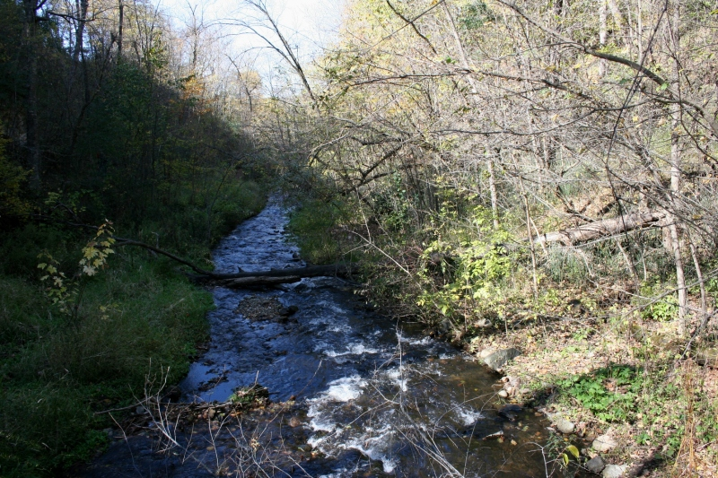 A shot of Osceola Creek, which rushes into the St. Croix River.