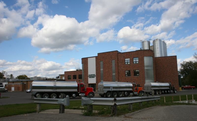 Trucks line up to deliver milk to the creamery.