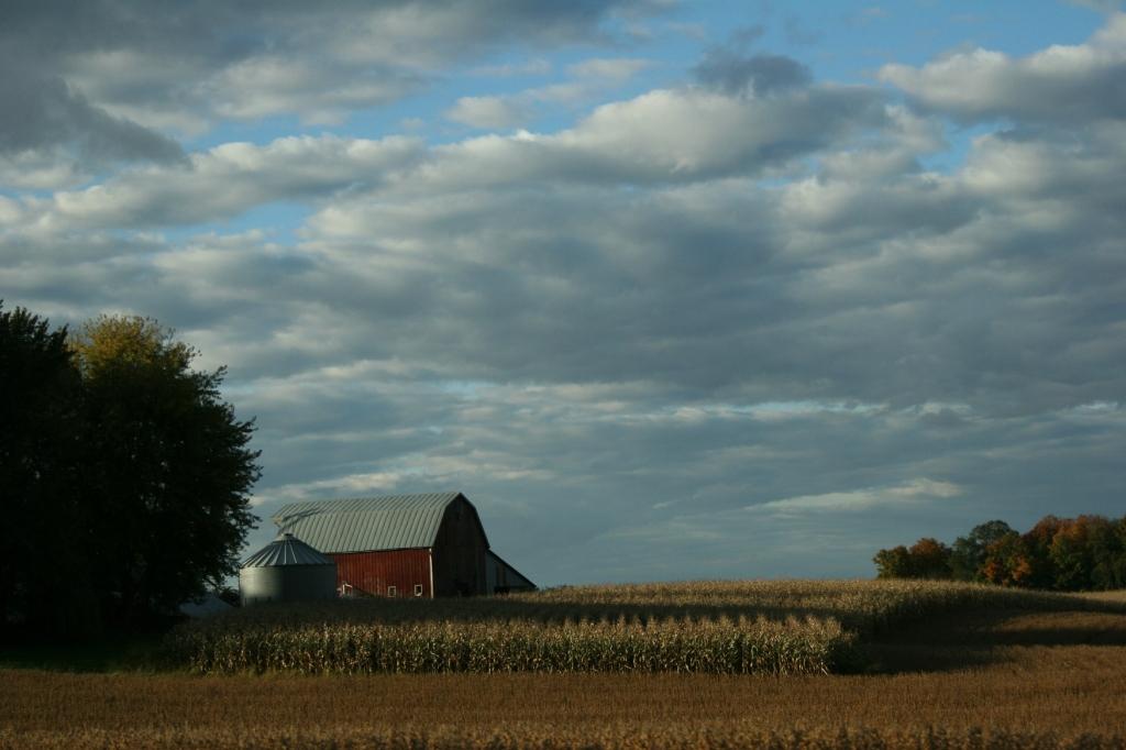 Rural, red barn, bin and field