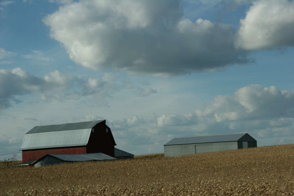 Rural, red barn, fields and grey sheds